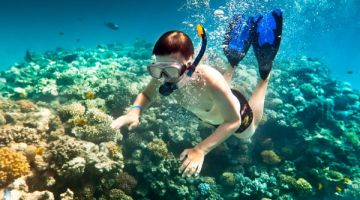 snorkelling-cham-island