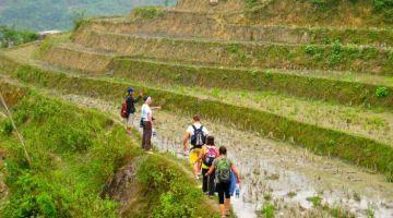 sapa-trekking-tour
